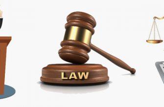 Представитель в суде по кредитам и долгам