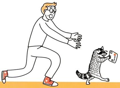 Погоня за котом с картой